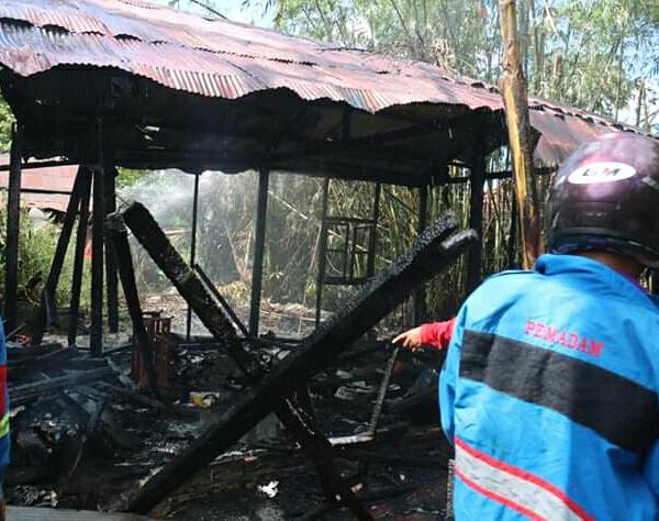 Gudang ternak saat hangus terbakar, Sabtu (29/6/2019).
