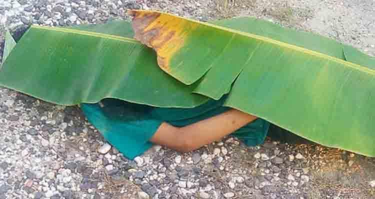 Jasad korban saat tergeletak ditepi jalan ditutupi daun pisang oleh warga Selasa (30/7).
