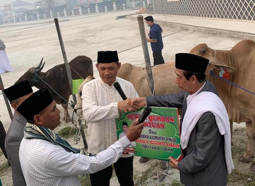 Sekda Kalteng Fahrizal Fitri mewakili Gubernur Kalteng saat menyerahkan secara simbolis sapi kurban kepada panitia Masjid Raya Darussalam, Minggu (11/8)
