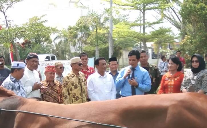 Wakil Ketua I DPRD Mura Likon saat menghadiri kegiatan penyerahan bantuan hewan kurban pihak swasta Kamis (8/8/2019).