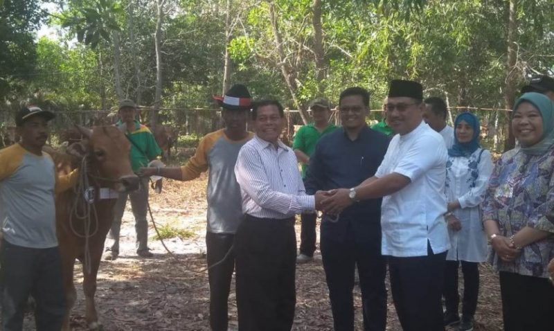 Wakil Ketua I DPRD Kobar Rusdi Gozali saat menyerahkan secara simbolis hewan kurban kepada perwakilan warga Sabtu (10/8/2019).