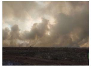 Karhutla di kawasan TNTP semakin parah, sebaran api meluas hingga ke kawasan Kabupaten Seruyan.