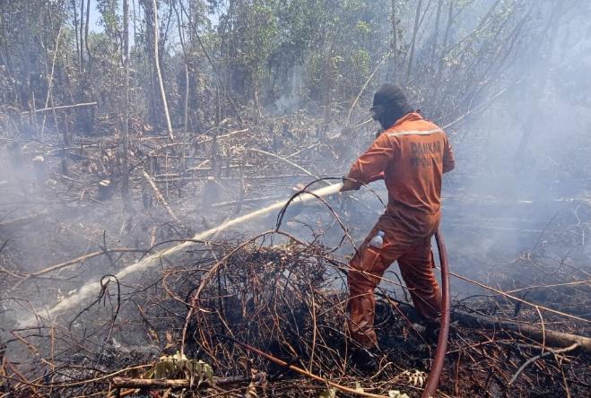 Tim Satgas Kobar saat  melakukan pemadaman api Rabu (4/9/2019).