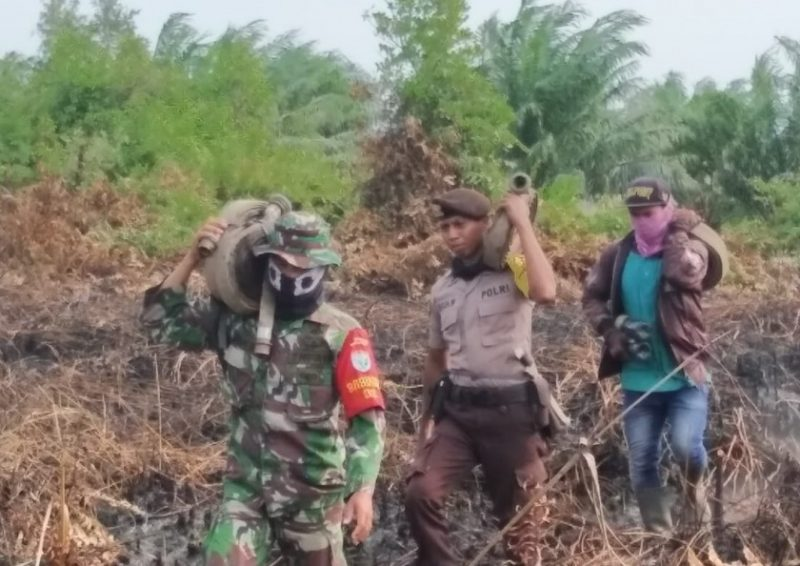 Petugas gabungan baik dari TNI dan Polri bersama warga setempat saat melakukan pemadaman api di lokasi lahan yang terbakar, Selasa (24/9/2019). Sedangkan tampak jelas dibelakang kebun sawit yang tak terkena amukan api.