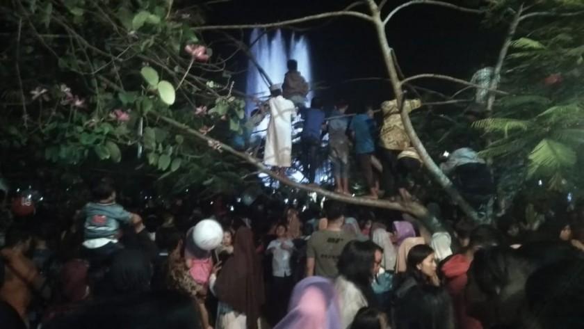 Penonton anak-anak dan remaja saat memanjat pohon untuk bisa menyaksikan acara Sabtu (19/10/2019) malam.