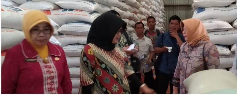 Staf Ahli Menteri Perdagangan Bidang Hubungan Internasional, Arlinda saat melakukan sidak di Pasar Besar Kota Palangka Raya Kamis (28/11/2019).