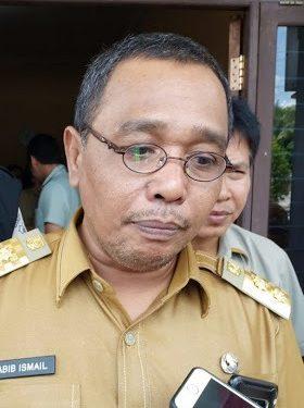 Wagub Kalteng Habib Said Ismail.