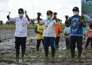 Menteri Pertanian Syahrul Yasin Limpo bersama Gubernur Kalteng Sugianto Sabran, pada saat melaksanakan gerakan penanaman padi serentak di Desa Belanti Siam, Kecamatan Pandih Batu, Kabupaten Pulang Pisau, Jumat (15/5/2020). Foto : Ra