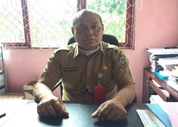 Kepala Dinas Koperasi, Perindustrian, dan Perdagangan (Diskoperindag) Kabupaten Seruyan, Laosma Purba. Foto : Ro