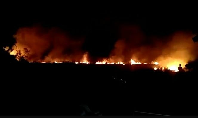 Kobaran api saat membakar lahan di Jalan Tjilik Riwut KM 8 Baamang Jumat (5/6) malam.