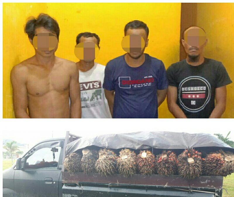 Keempat pelaku saat diamankan di Mapolsek Pangkalan Banteng bersama barang bukti, Rabu (10/6).