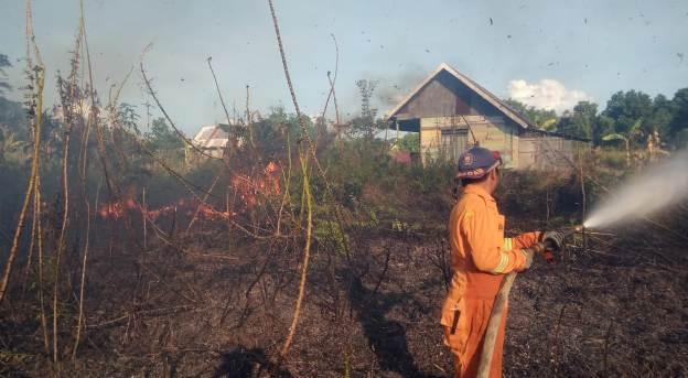 Petugas Damkar saat melakukan pemadaman api di lokasi kejadian, Jumat (14/8).