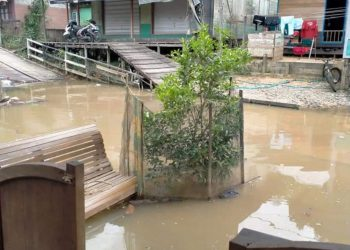 Akibat curah hujan tinggi, air kembali menggenangi desa tumbang  sanamang RT.06 Kecamatan Katingan Hulu. Foto : MI