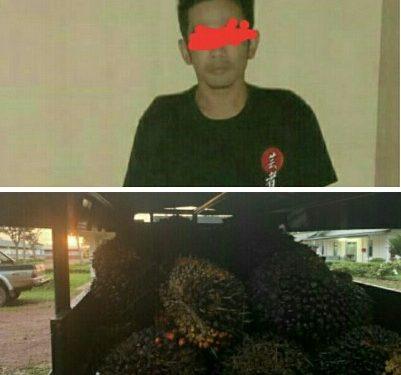 Pelaku saat diamankan di Mapolsek Danau Sembuluh Sabtu (17/10).