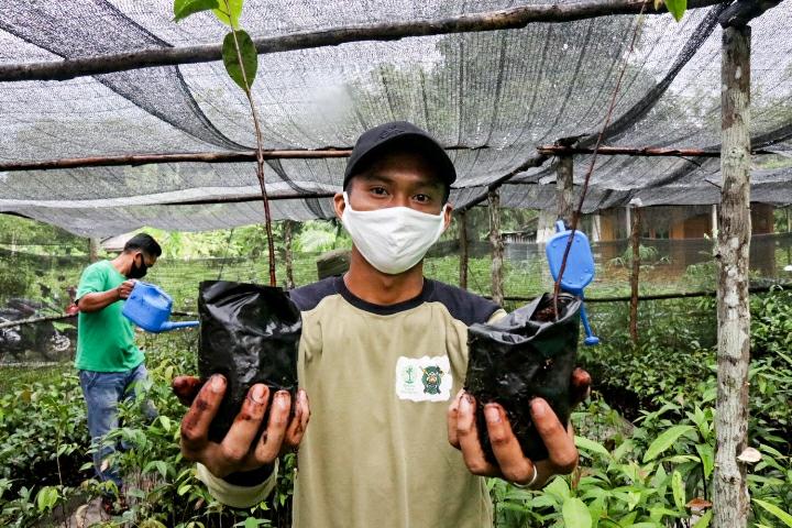 Penyiapan 40.000 bibit pohon oleh tim BNF