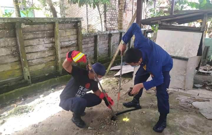 Petugas Damkar Kobar saat menangkap ular kobra, Selasa (30/3).
