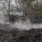 Kebakaran di Riau beberapa waktu lalu.