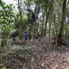 Tim Survei Lembaga Pengelola Hutan Desa (LPHD) Bukit Bamba dan Borneo Nature Foundation (BNF) Indonesia, menemukan potensi biodiversitas yang tinggi di Hutan Desa Bukit Bamba, Kecamatan Kahayan Tengah, Kabupaten Pulang Pisau, Kalimantan Tengah. Foto : Ist